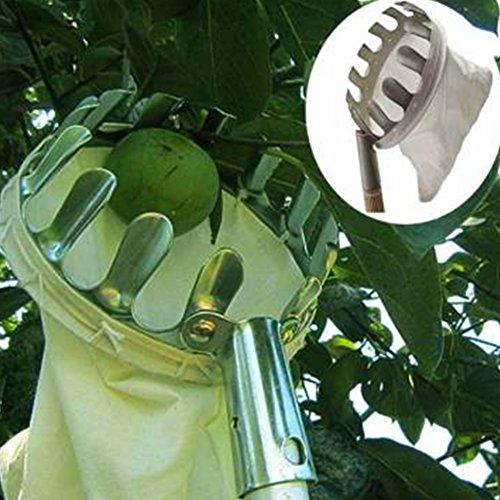 pratique 13 dents Fruits myrtilles en Orange Apple Pêche Arbre d'appui Panier Chiffon de sac à main Outil de jardin 15 x 20 cm