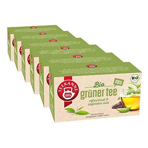 Teekanne Bio Grüner Tee, 6er Pack