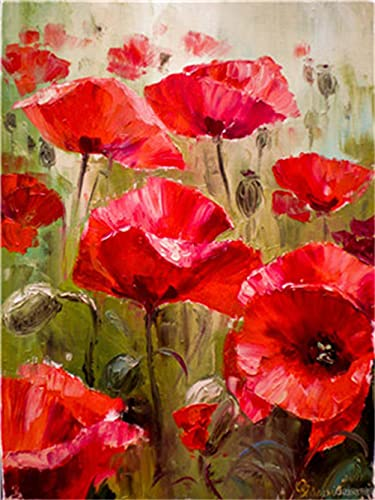 Meecaa Paint by Numbers Poppies Flower Kit for Adults Beginner DIY Oil Painting 16x20 inch (Flower 3, No Frame)