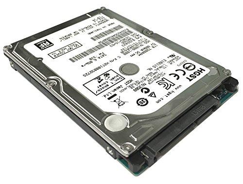 disco duro hgst fabricante Western Digital