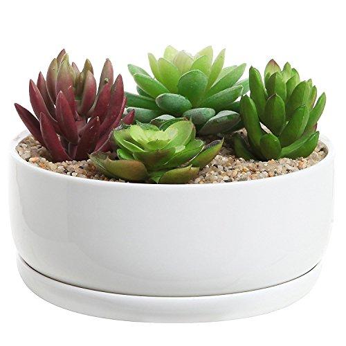 MyGift Vaso designer rotondo in ceramica bianca, moderno, per piante grasse 15,2cm  / Vaso per cactus / Fioriera decorativa