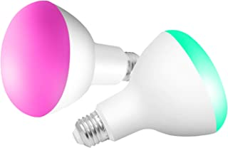 Best smart flood light bulb Reviews