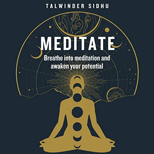 Meditate Audiobook By Talwinder Sidhu cover art