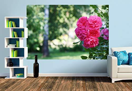 Premium Foto-Tapete Sommer im Garten (versch. Größen) (Size M | 279 x 186 cm) Design-Tapete, Wand-Tapete, Wand-Dekoration, Photo-Tapete, Markenqualität von ERFURT