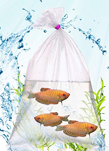 APQ Pack of 100 Plastic Fish Bags 6 x 12. Clear Polyethylene Bags 6x12. Thickness 2 mil. Fish Transport Bags for Storing and Transporting. Ideal for Industrial, Health, Food Service.