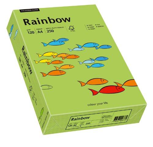 Papyrus Rainbow, DIN A4, 120 g, grün
