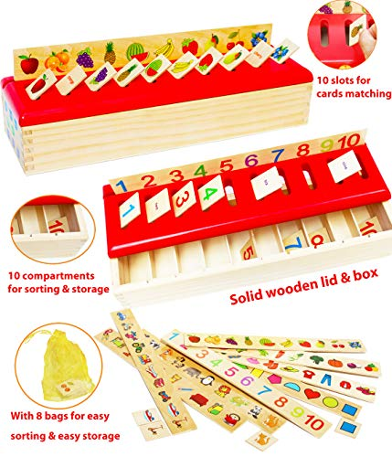 Toys of Wood Oxford Montessori Lernspielzeug - Sortieren, Vergleichen und Lernen - 8 Objektkategorien - Sortierbox für Kinder