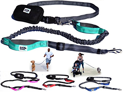 Black Rhino - Premium Hands Free Dog Leash for Running Walking Jogging & Hiking - Adjustable Length Dual Handle Bungee Leash Medium – Large Dogs Neoprene Padded Handles - Running Pouch Included Aqua