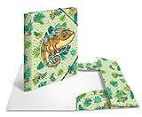 Herma - Cartellina portadocumenti in plastica resistente, con alette interne stampate, con elastico, angoli elastici, 1 carpetta per bambini
