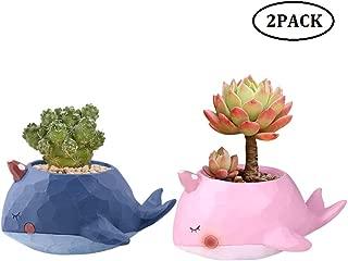 CheeseandU 2Pack Whale Plant Pot Window Boxes Cute Cartoon Whale Flower Pot Resin Succulent Planter Pots/Tiny Flower Microlandscape Plant Containers Animal Decor, Pink+Blue(Plants not Included)