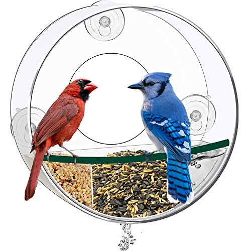 Birdious Circular Window Bird Feeder House: Bring Wild Birds Up Close. Strong Suction Cups and Removable Tray. Clear, See Through, Large Birdfeeder for Outside. Best Gift Idea