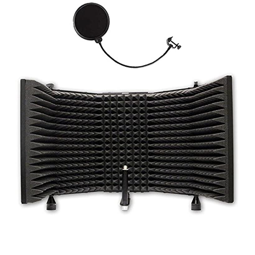 AxcessAbles SF-101 Recording Studio Microphone Isolation Shield (Shield Only)