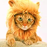 Cat Costume Halloween Pet Costumes Pet Apparel for Dogs and Cats Puppy (Lion Mane) (Brown)
