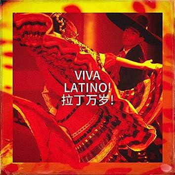 Viva Latino! 拉丁万岁!