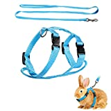 ASOCEA Pet Rabbit Harness Leash Adjustable Nylon Bunny Lead Small Animal Vest Accessories for Bunny Cat Puppy Kitten Ferret and Other Small Pet Animals Walking Running Jogging Outdoor-Blue