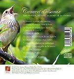 Zoom IMG-1 concert d oiseaux son pur