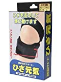 テルコーポレーション ひざ元気 ブラック Lサイズ(1枚入)