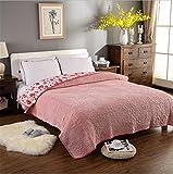 LMXJB Flanell Reine Farbe Gesteppte Quilt,Siesta FrüHling Und Herbst Decke Bettdecke, Warme Und Dicke BläTter BettwäSche [Single/Double/Queen],Pink,200 * 230cm