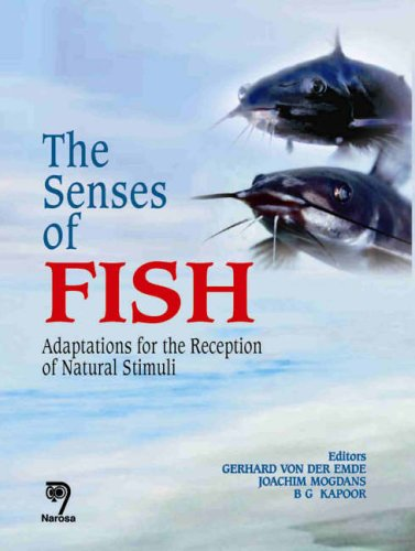 The Senses of Fish: Adaptations for the Reception of Natural Stimuli