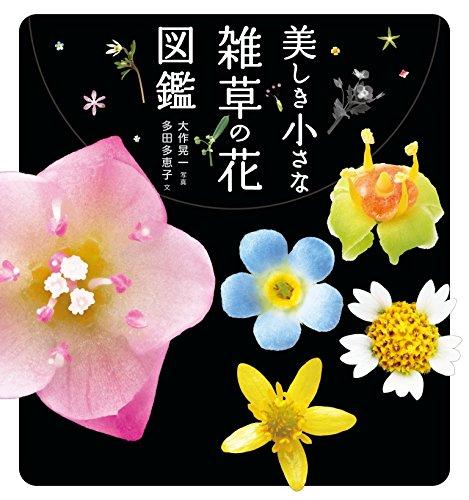 山と渓谷社『美しき小さな雑草の花図鑑 史上最高に美しい雑草の花図鑑。雑草はこんなにも美しい!』