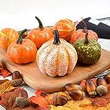 vok Thanksgiving Artificial Pumpkins Home Decoration Set, Mixture of 50 Artificial Harvest Decoration, Halloween Mini Artificial Pumpkins and Gourds Maple Leaves Pine Cones Acorns Set