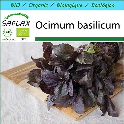 SAFLAX - Kit cadeau - BIO - Basilic - Pourpre - 400 graines - Avec boîte cadeau/d'expédition, autocollant d'expédition, carte cadeau et substrat de culture - Ocimum basilicum