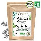 ☘️ CAFE GRAIN BIO 1kg   Café en Grain Arabica   Torréfaction Artisanale   Gabriel