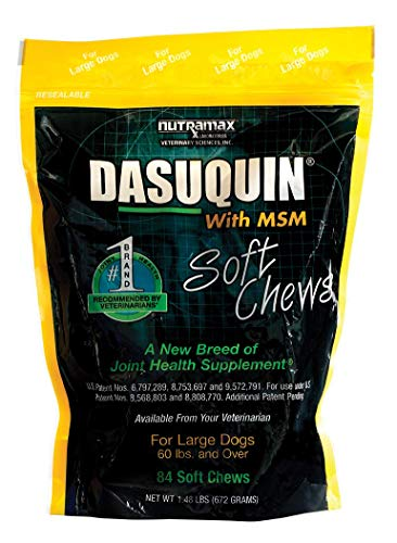 Nutramax Dasuquin with MSM Soft Chews, Large Dog, 84 Count