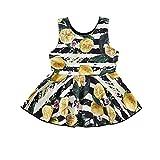 CIPOGL Säugling Baby Mädchen Schwester Sommer Matching Outfits, Zitronen Druck Kleider Strampler Romper Sommer Cool Outfits Babykleidung (90, Kleider)