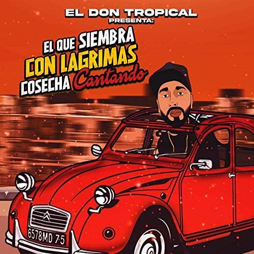 El Don Tropical