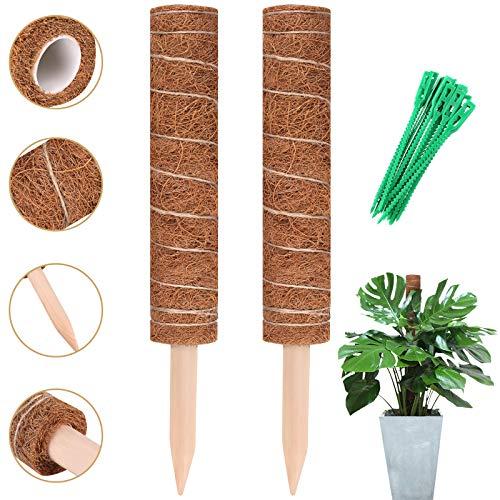 Moosstab, 2 Stück 40 cm Monstera Rankhilfe, Verlängerbar Natürlicher pflanzstab Kokosstab mit 20 Pflanzenbinder, pflanzen stütze für Rankhilfe Zimmerpflanzen Haus Garten