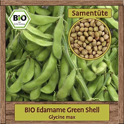 BIO Bohne Samen Sorte Green Shell (Glycine max) Gemüsesamen Bohne Saatgut