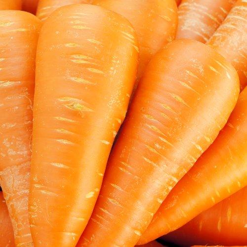 旬の産地より ピカピカ 大きめ 人参 たっぷり1箱 10kg 旨み・栄養たっぷりです