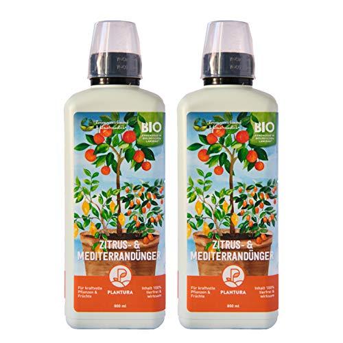 Plantura Bio Zitrus- & Mediterrandünger, 2er Set, Bio Flüssigdünger für Zitronenbaum & Co, 1,6 Liter