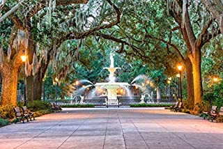 Best savannah georgia fountain Reviews