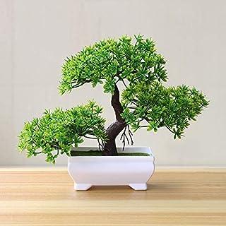 Skyseen - Árbol de madera artificial de cedro de bonsái diseño de árbol de loto de pino en maceta de plástico artificial ...