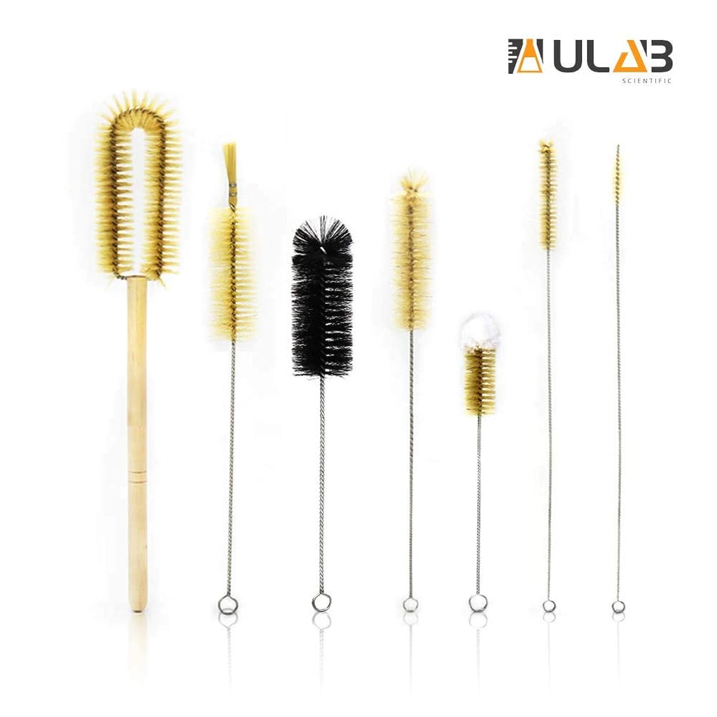 ULAB Scientific Lab Cleaning Brush Set, 7 Sizes for Different use, one Beaker Brush, one Buret Brush, one Cylinder Brush, Four Tube Brushes, UCB1001