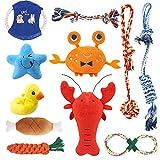 feihao Juguetes para Perros, Juguetes de Cuerda para Perro - Juego de Juguetes para Perros,Dog Chew Toys y Juguete de Chirriador Peluche para Perros(11 Piezas)
