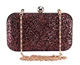 Tooba Women's Handicraft Wear Hand Embroidered Box Clutch Bag Purse (Copper)