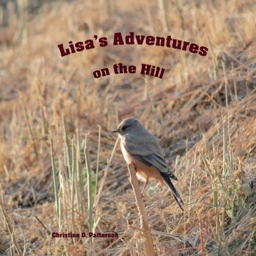 Lisa's Adventures on the Hill ~ TOP Books