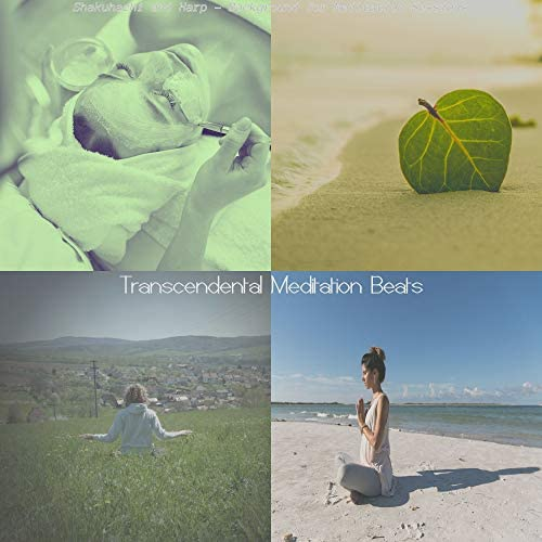 Transcendental Meditation Beats