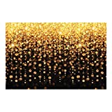 Celebration Lights Backdrop Banner for Christmas (3 Panels Make Backdrop 9' wide x 6' tall) DIY Photo Booths, Christmas Parties, Wedding Reception, Birthday Parties, New Year's Eve, Events and More!