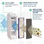 Germ guardian true hepa filter air purifier, uv light sanitizer, eliminates germs, filters allergies, pets, pollen… 12 5-in-1 air purifier for home - electrostatic hepa media air filter reduces up to 99. 97% of harmful germs, dust, pollen, pet dander, mold spores, and other allergens as small as. 3 microns from the air pet pure filter - an antimicrobial agent is added to the filter to inhibit the growth of mold, mildew and odor-causing bacteria on the filter's surface kills germs - uv-c light helps kill airborne viruses such as influenza, staph, rhinovirus, and works with titanium dioxide to reduce volatile organic compounds
