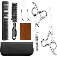 ALook Professional Hair Scissor Set (Silver)