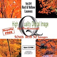 High Quality Digital Image for Professional Vol.64 Red & Yellow Leaves
