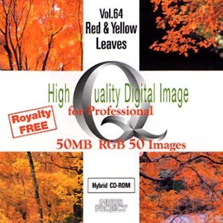 軸問い合わせる者High Quality Digital Image for Professional Vol.64 Red & Yellow Leaves