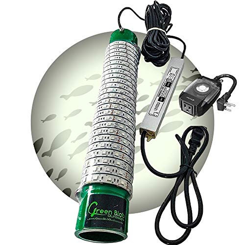 Green Blob Outdoors (White Color) Jumbo 30000 Lumens 600 LED Underwater Fishing Light 110 Volt AC 3 Prong Plug Includes Timer w Photocel 30ft Power Cord (White)