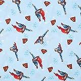 SCHÖNER LEBEN. Baumwollstoff Digitaldruck Superman