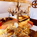 Antler Chandelier 6 Light, Antler Lighting Vintage Style Light Fixture in Hand-Polished Resin