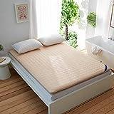 Colchón Japoneses piso futón colchones for dormir Pad - Tatami plegable rueda for arriba el colchón - A prueba de humedad antibacteriana Estudiante Célula compartida Cama for colchón, gris cama revest